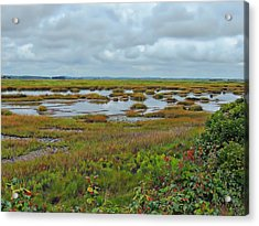 Plum Island Acrylic Print by Marcia Lee Jones