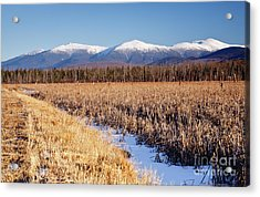 Pondicherry Wildlife Refuge - Jefferson New Hampshire Acrylic Print