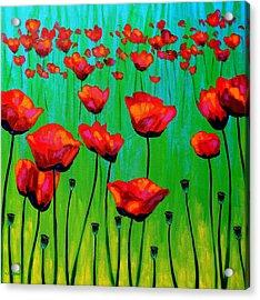 Poppy Dance Acrylic Print by John  Nolan