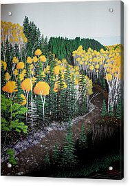 River Through Golden Forest Acrylic Print by Dan Shefchik