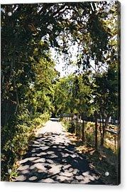 Riverside Park Acrylic Print