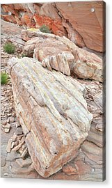 Acrylic Print featuring the photograph Sandstone Slope In Valley Of Fire by Ray Mathis