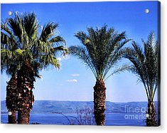 Sea Of Galilee From  Mount Of The Beatitudes Acrylic Print by Thomas R Fletcher