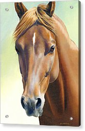 Acrylic Print featuring the painting Serenity by Alecia Underhill