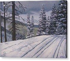 Snowbound Acrylic Print by Lisa Barr