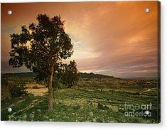 Spanish Landscape Acrylic Print by Angel  Tarantella