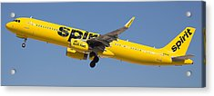 Spirit Airline Acrylic Print