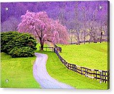 Purple Haze In The Distance Acrylic Print