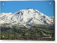 Squaw Butte Acrylic Print by Robert Bales