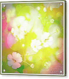 Summer Flowers, Baby's Breath, Digital Art Acrylic Print