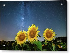 Sunflower Galaxy Acrylic Print