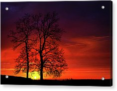 Acrylic Print featuring the photograph Sunset by Bess Hamiti