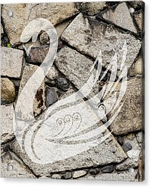 Swan Art Acrylic Print