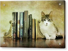 The Book End Acrylic Print by Diana Angstadt