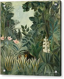 The Equatorial Jungle Acrylic Print