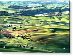 The Palouse Acrylic Print
