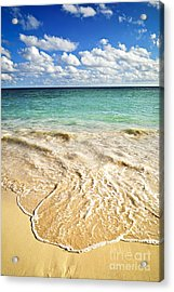 Tropical Beach  Acrylic Print by Elena Elisseeva