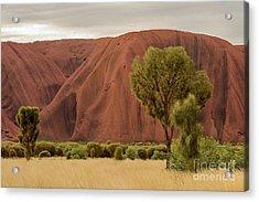 Uluru 08 Acrylic Print