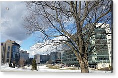 Umass Medical Center Acrylic Print