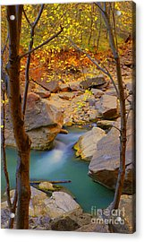 Virgin River In Autumn Acrylic Print by Dennis Hammer