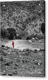 Acrylic Print featuring the photograph Walk  by Charuhas Images