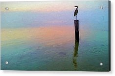 Watching Over Pensacola Bay Acrylic Print by JC Findley