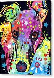 Whippet Acrylic Print by Dean Russo
