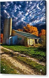 Wisconsin Life Acrylic Print by Phil Koch