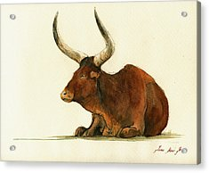 Zebu Cattle Art Painting Acrylic Print by Juan  Bosco