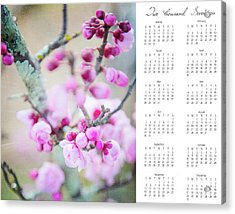 Acrylic Print featuring the photograph 2017 Wall Calendar Cherry Blossoms by Ivy Ho