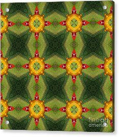 Kaleidoscopic Ornaments Acrylic Print