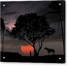 2154 Acrylic Print