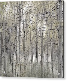 238 Acrylic Print by Peter Holme III