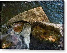 Stone Sharkhead Acrylic Print