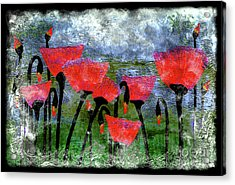 26a Abstract Floral Red Poppy Painting Acrylic Print
