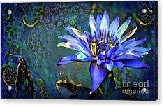 Jeweled Water Lilies Acrylic Print by Amy Cicconi