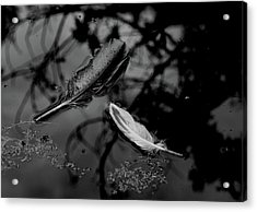 On The Surface - Bw Acrylic Print by Marilyn Wilson