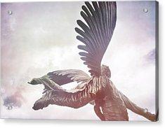 Airborne Angel Acrylic Print by JAMART Photography