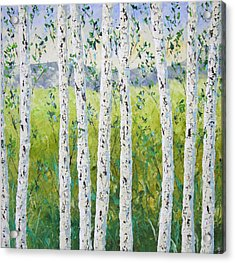 Aspen Trees Colorado Acrylic Print by Frederic Payet
