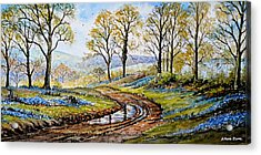 Bluebells In The New Forest Acrylic Print by Andrew Read