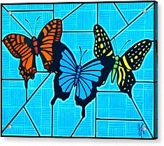 3  Butterflies On Blue Acrylic Print