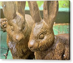 Garden Cottontails  Acrylic Print by JAMART Photography