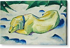 Dog Lying In The Snow Acrylic Print by Franz Marc