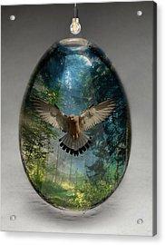 Eagle Art Acrylic Print by Marvin Blaine