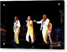 Earth Wind And Fire Acrylic Print by April Sims