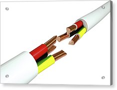 Electrical Cable Cut Acrylic Print