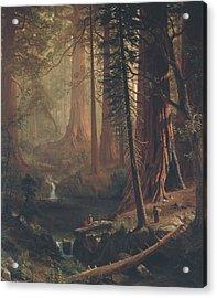 Giant Redwood Trees Of California Acrylic Print by Albert Bierstadt
