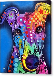 Greyhound Acrylic Print by Dean Russo