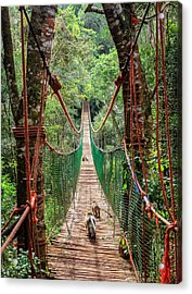 Acrylic Print featuring the photograph Hanging Bridge by Alexey Stiop
