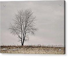 February Horizon   Acrylic Print by JAMART Photography
